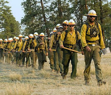 Wildland firefighter basic training available at community colleges, tech schools, training centers