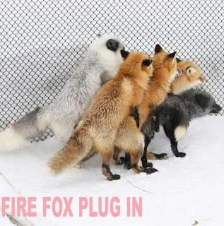 funny fire fox plug in