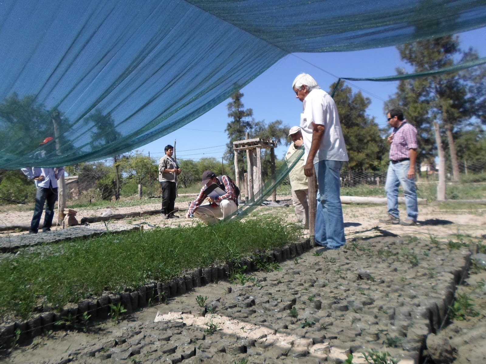 Parque chaque o forestal actividades de vinculaci n entre for Viveros en santiago