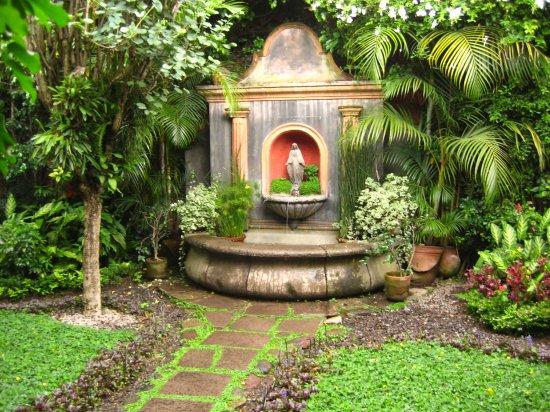 Adelante estas en tu casa jardiner a en el hogar - Jardineria en casa ...