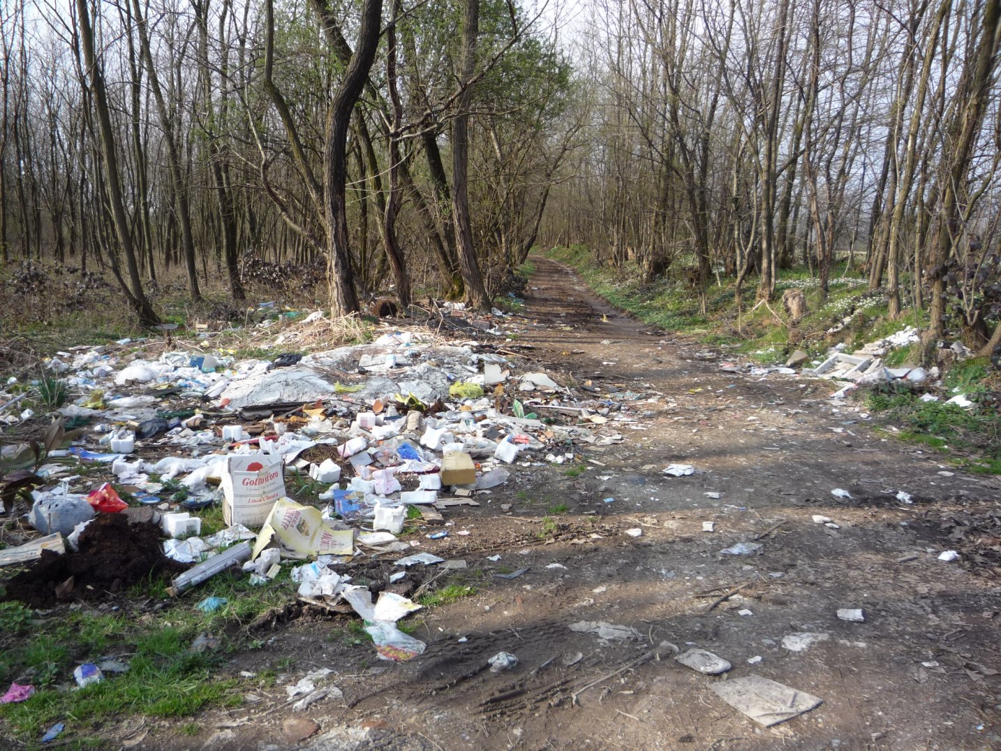 Brianza centrale rifiuti e degrato nel bosco urbano di for Cabina innevata nei boschi