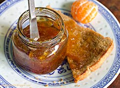 Mountain Forest Honey & Satsuma Marmalade