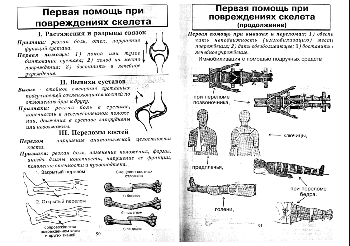 Программа Скелет Человека
