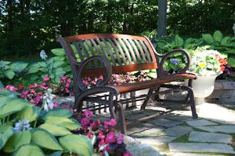 My Garden Blog
