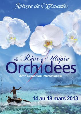 23ème exposition de l'Abbaye de Vaucelles - Mars 2013 Vaucelles2013