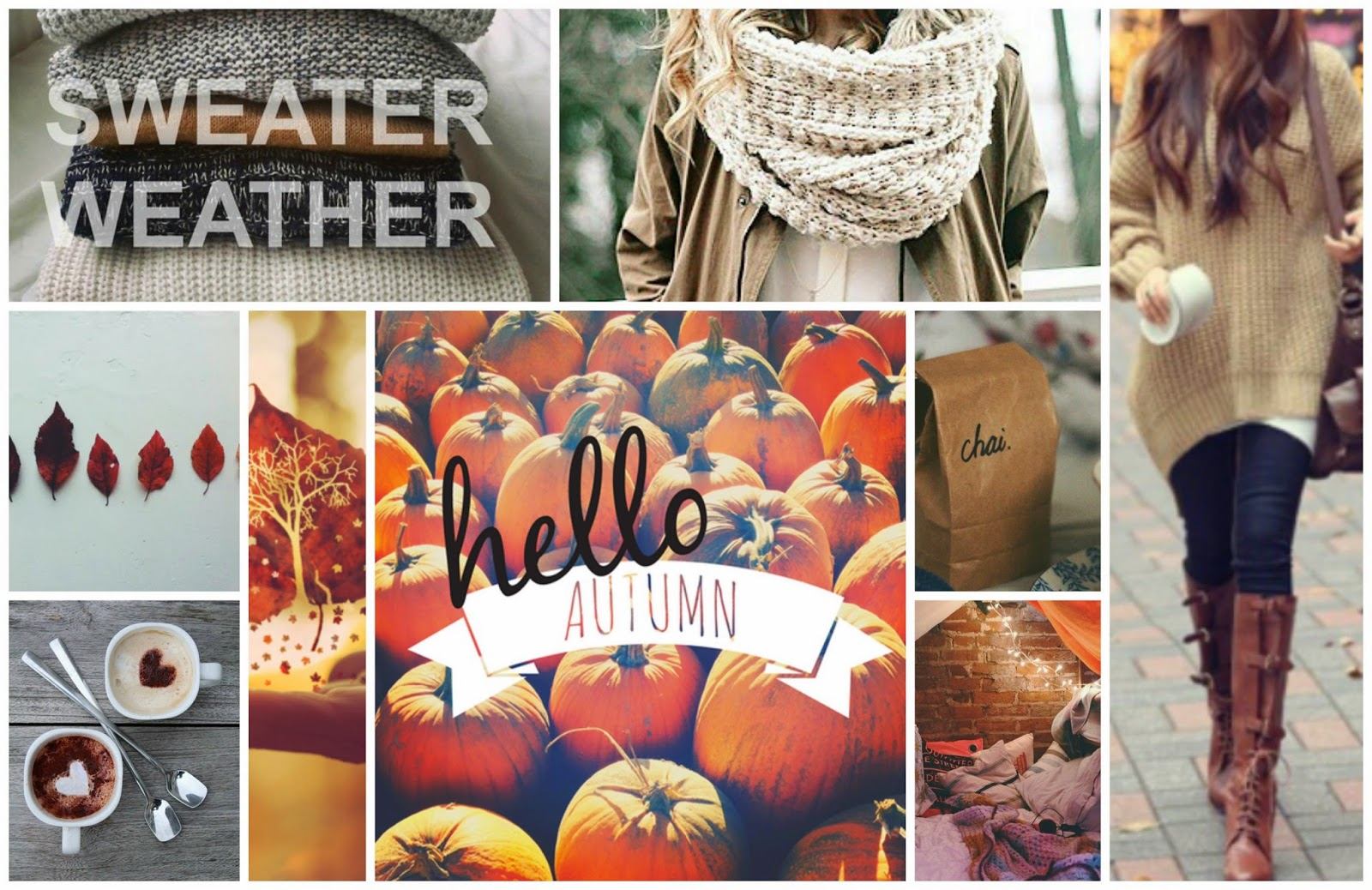 Guest Post: Ode to Sweater Weather | Up the Rollercoaster