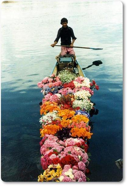båt blommor