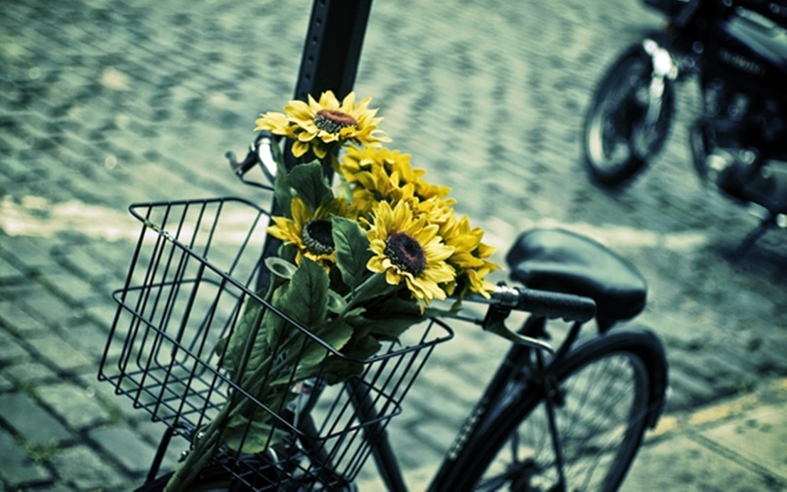 bicycles with flowers wallpaper - photo #3
