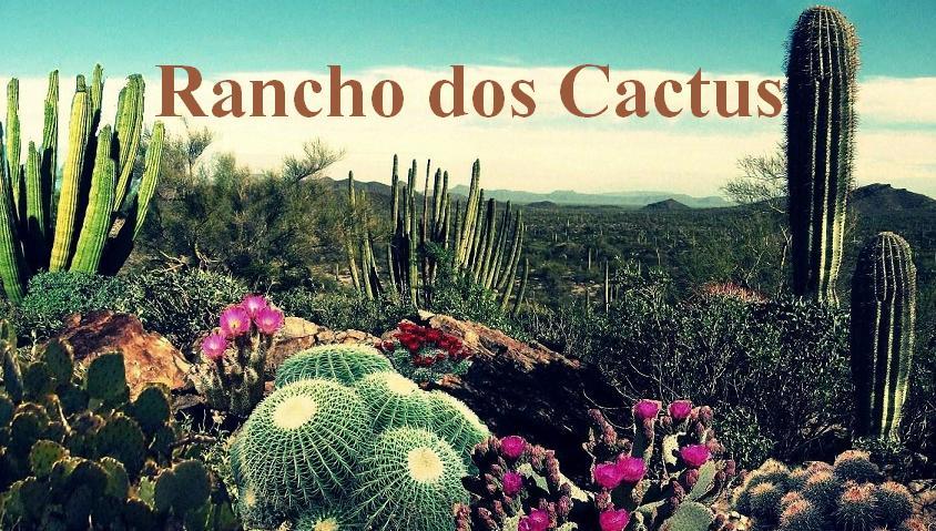 Rancho dos Cactus