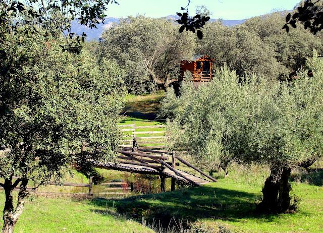 Casa de madera y puente en Campillo de Deleitosa