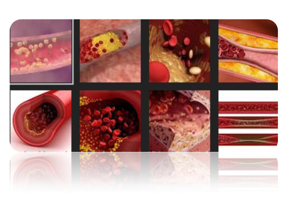 Kolesterol memang memiliki beberapa fungsi penting dalam tubuh manusia, jika kadar kolesterol di dalam tubuh dalam keadaan normal atau stabil. Beberapa fungsi kolesterol sebagai lemak tubuh yaitu sebagai penyusun struktur pada membran sel, melindungi kulit dari racun dan masalah kekeringan serta pembentukan vitamin D (bersama sinar UV). Namun berbagai gangguan kesehatan pada tubuh seperti gangguan ereksi, gagal ginjal, serta jantung merupakan beberapa akibat dari kenaikan kadar kolesterol dalam tubuh