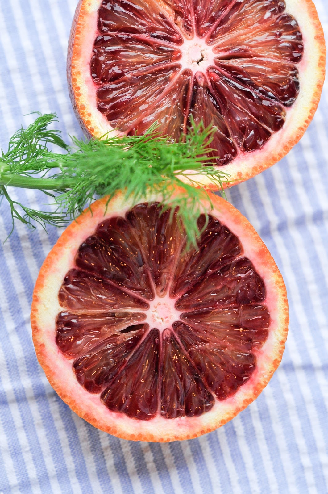 Recipe for Blood Orange, Beet and Fennel Salad