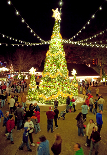 busch gardens christmas town open for festive fun