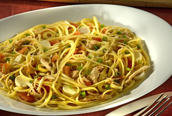 Flavors of brazil recipe pasta with chicken and palm hearts massa