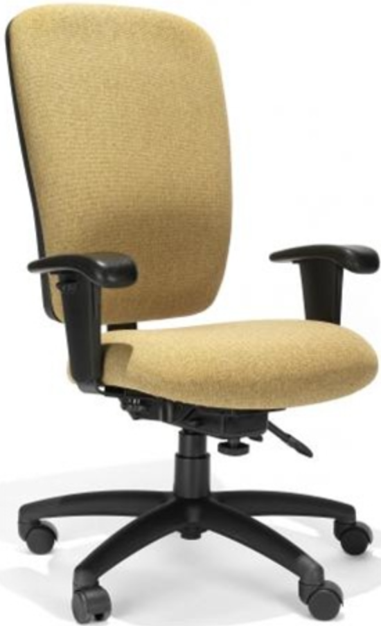 Ranier High Back Office Chair by RFM