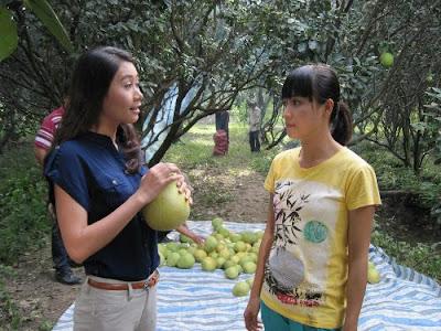 Phim Hương Bưởi Việt Nam Online