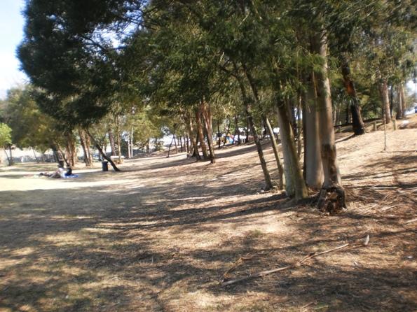 Parque Ecológico Gameiro