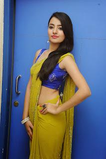 Ruksha Meer sizzling in saree 007.JPG