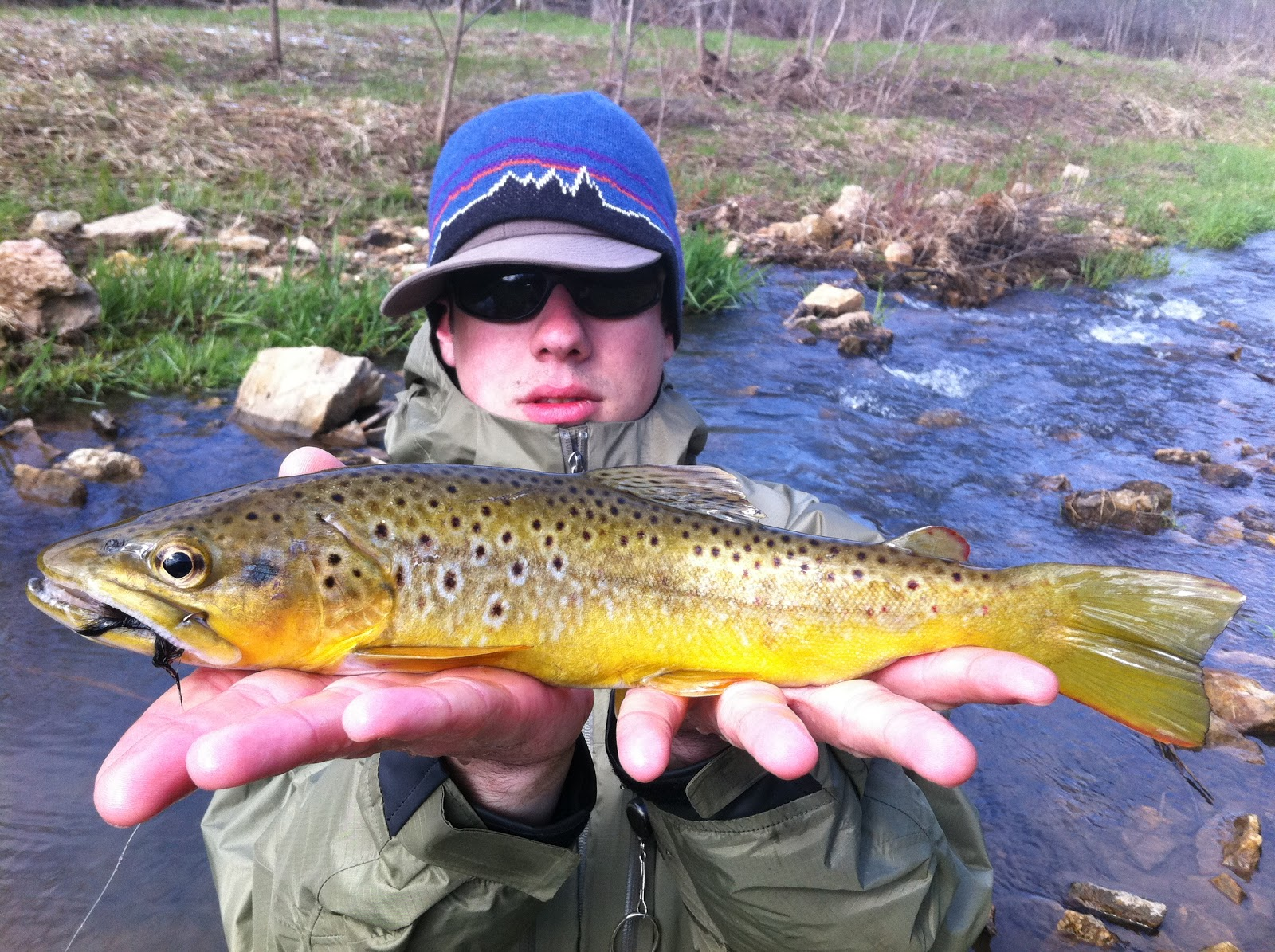 The chicago trout bum driftless area trout fishing for Driftless fly fishing