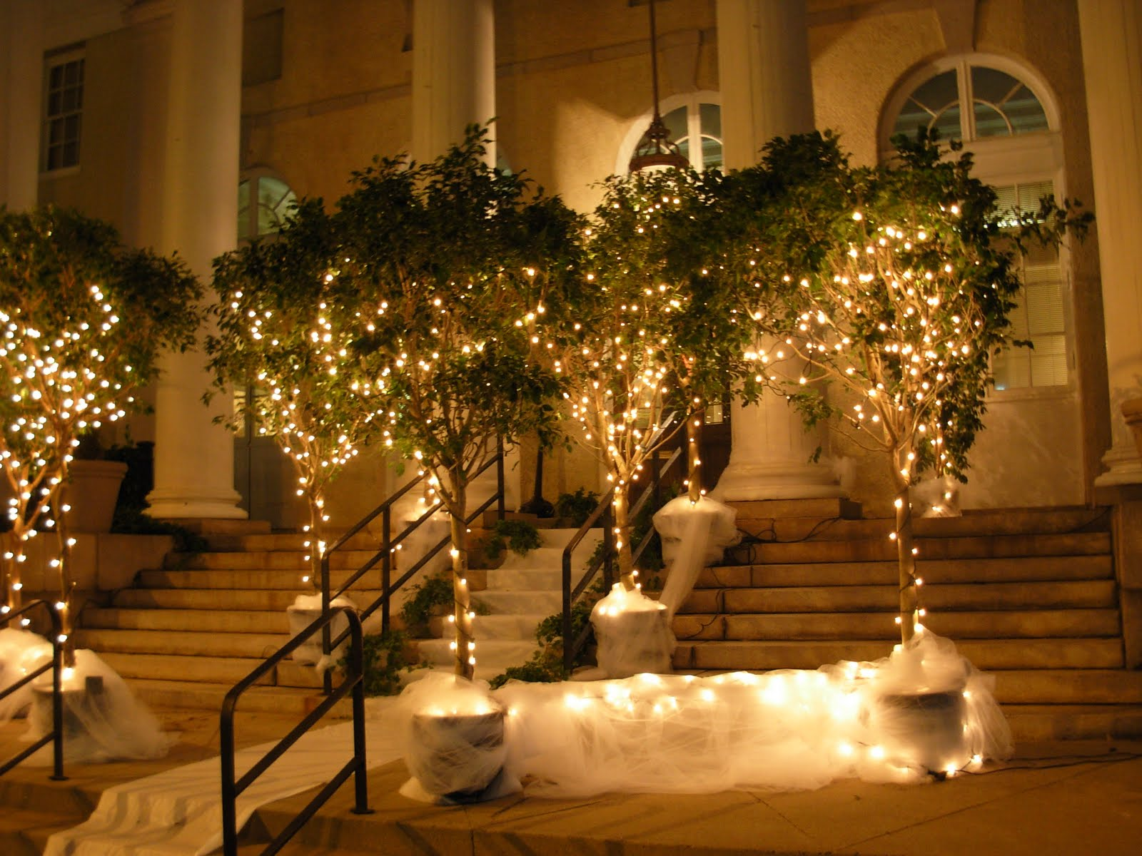 I want my boring ugly venue to look amazing help for How to decorate outdoor trees with lights