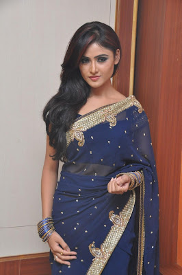 sony charista in saree actress pics