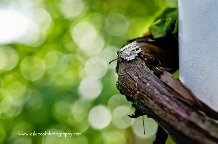 ottumwa photographer
