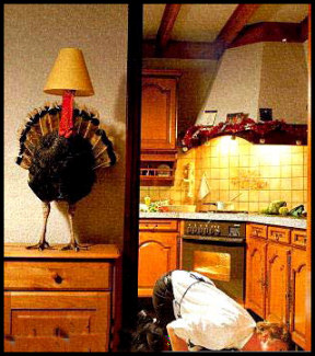 Funny Thanksgiving