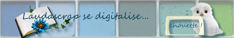 Laudascrap se digitalise...