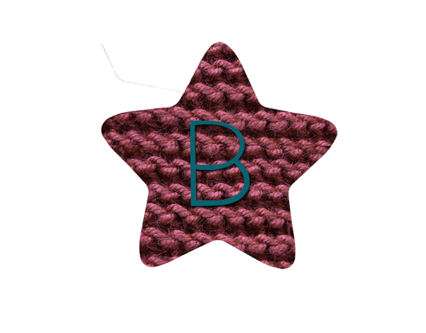 Estrella Bonita