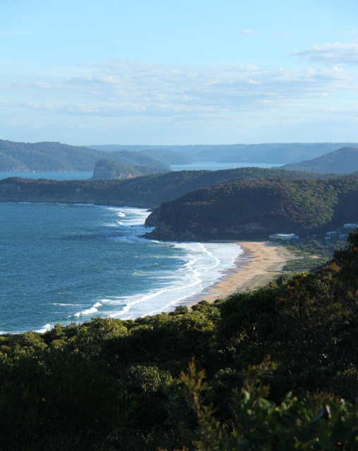 View from Marie Byles Lookout