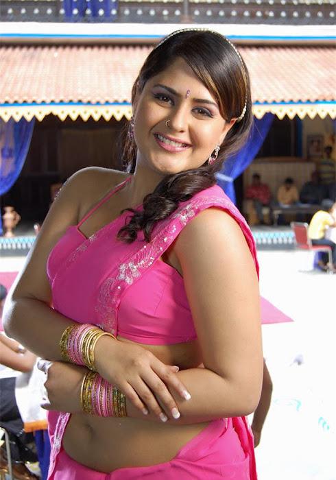 Actress Farzana Saree Below Navel show Photos