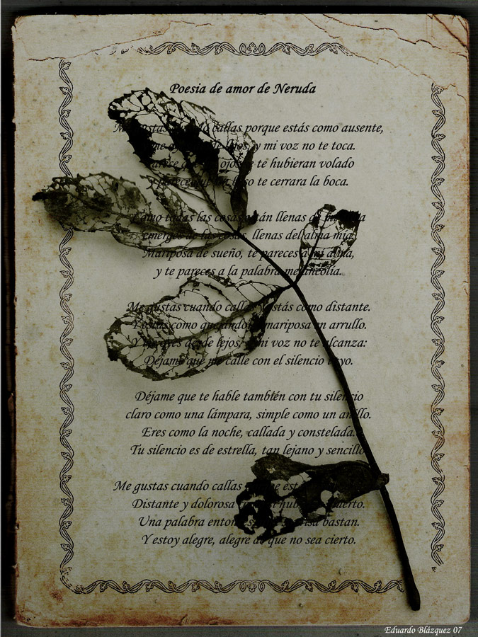 el amor poemas. poemas de amistad y amor.