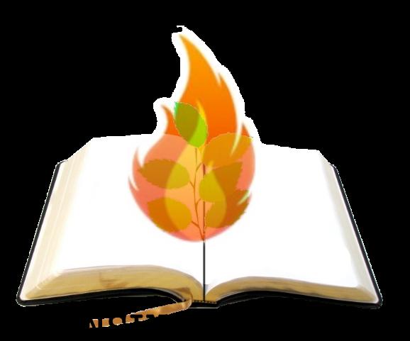 CURSO DE BIBLIOLOGIA