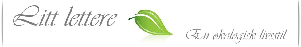 Litt lettere - økologisk livsstil - sunne oppskrifter - økologisk mat - supermat - økologisk blogg