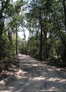 Archer Braid Trail near starting point in Archer