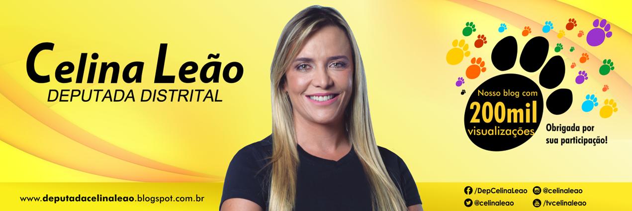Deputada Celina Leão