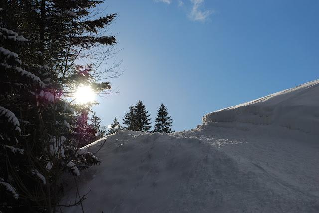 Schneehasen und weiße Ostern Goettinger Tageblatt  - Lustige Bilder Ostern Im Schnee