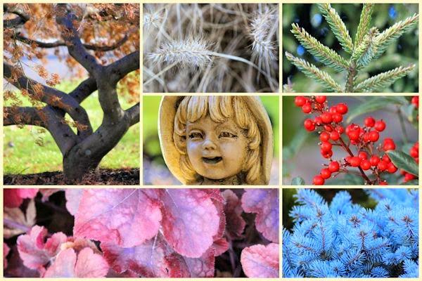 A guide to northeastern gardening 2014 gardening year in for Xd garden design