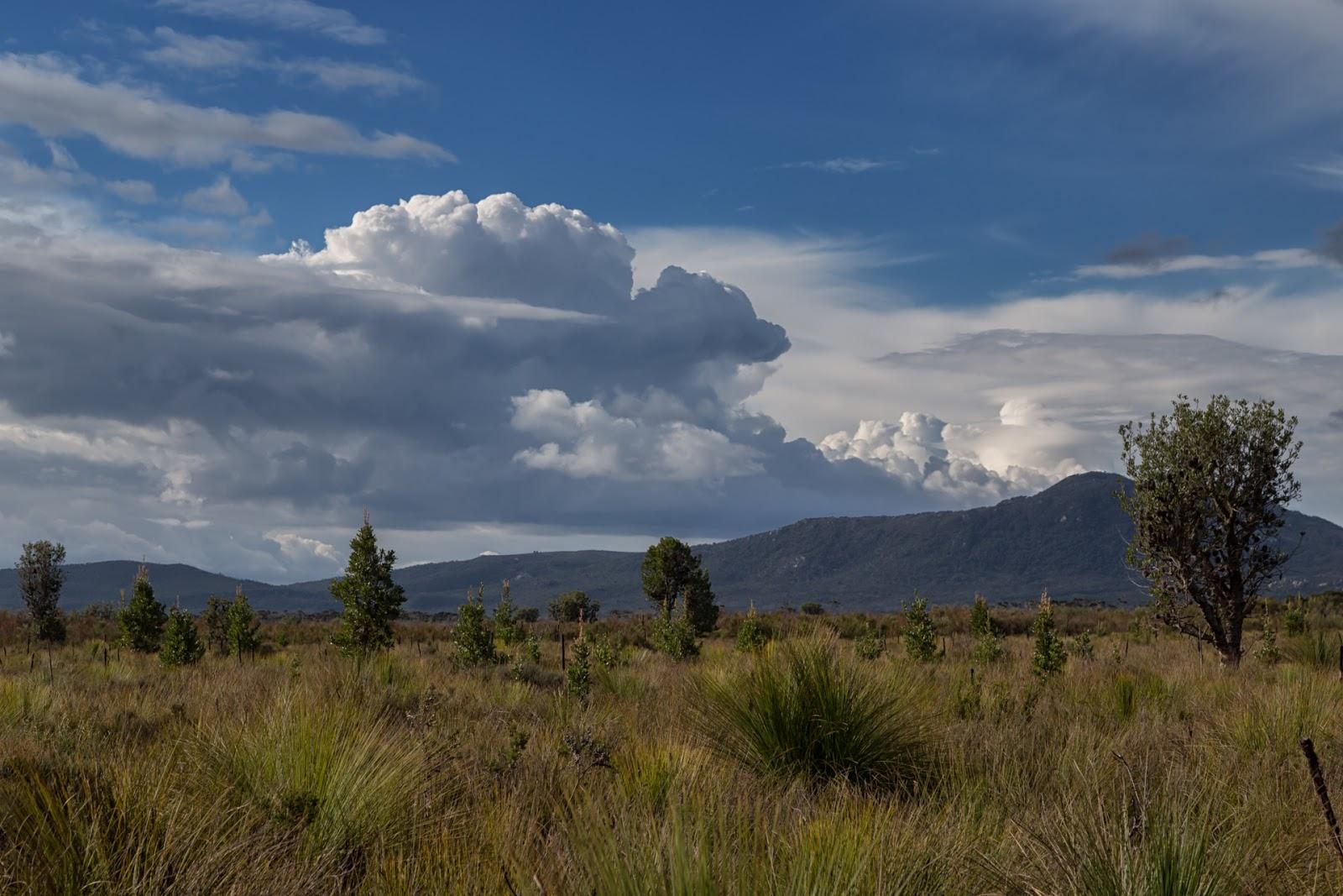 cumulus clouds over vereker range wilsons promontory