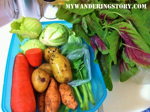 The wanderers journal making our own baby food i love exploring new recipes for my babys food and am always excited in shopping and testing new veggies for naomis rice porridge forumfinder Image collections