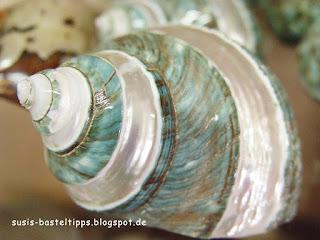susis basteltipps mit stampin up: blau gestreifte Muschel auf Kreta