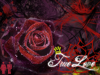 True Love Desktop Wallpaper : Love Wallpaper Background HD for Pc Mobile Phone Free Download Desktop Images: True Love ...