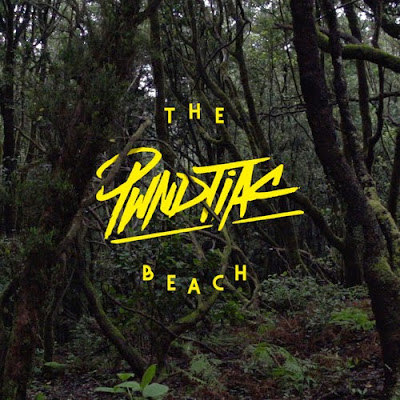 PWNDTIAC - The Beach EP