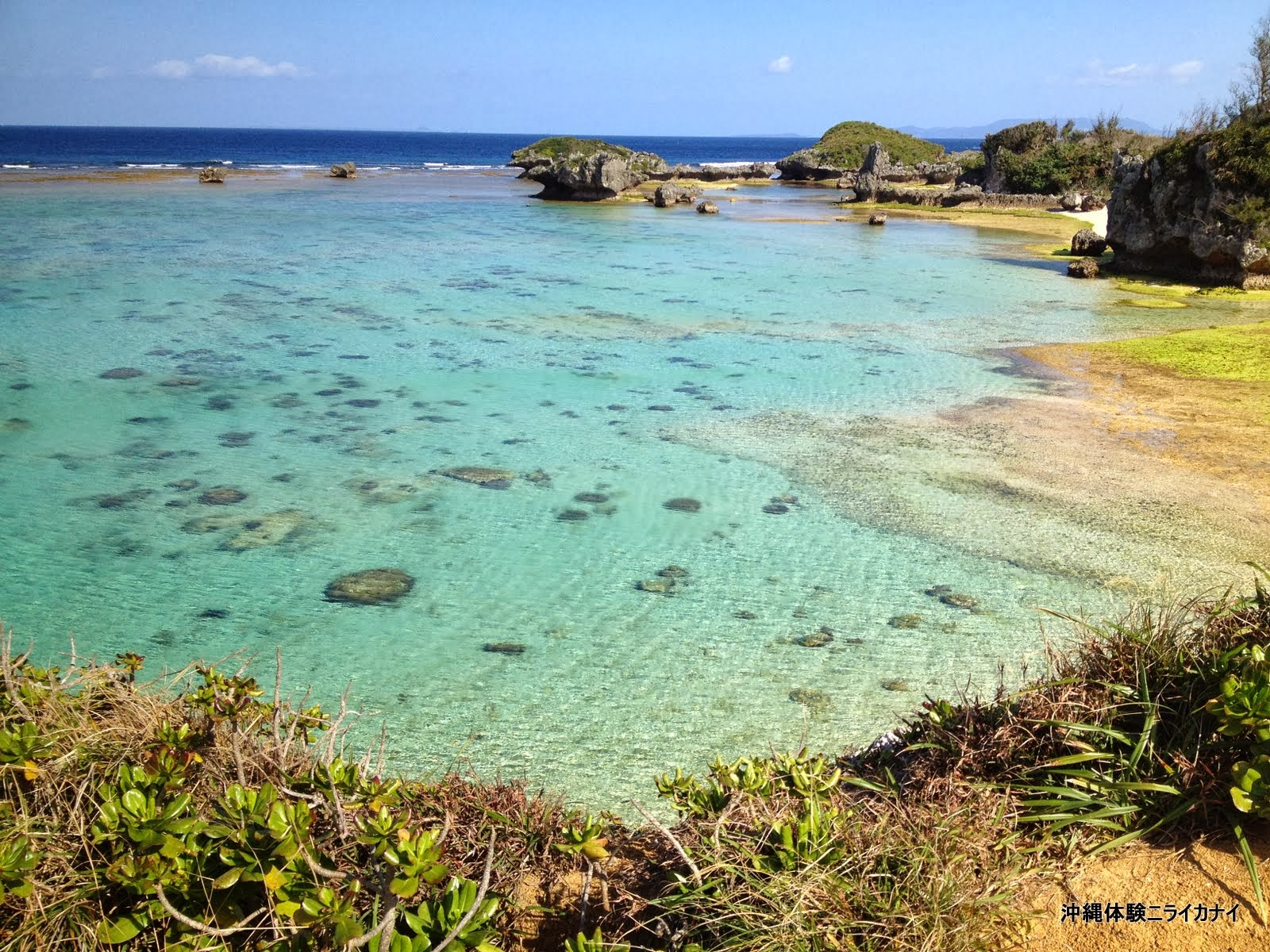 体験/観光 沖縄家族旅行 子ども おすすめ
