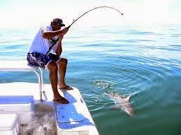Gambar orang sedang memancing ikan - gambar lucu gif