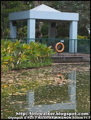 城門谷公園 (Shing Mun Valley Park)