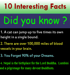 10 INTERESTING FACTS