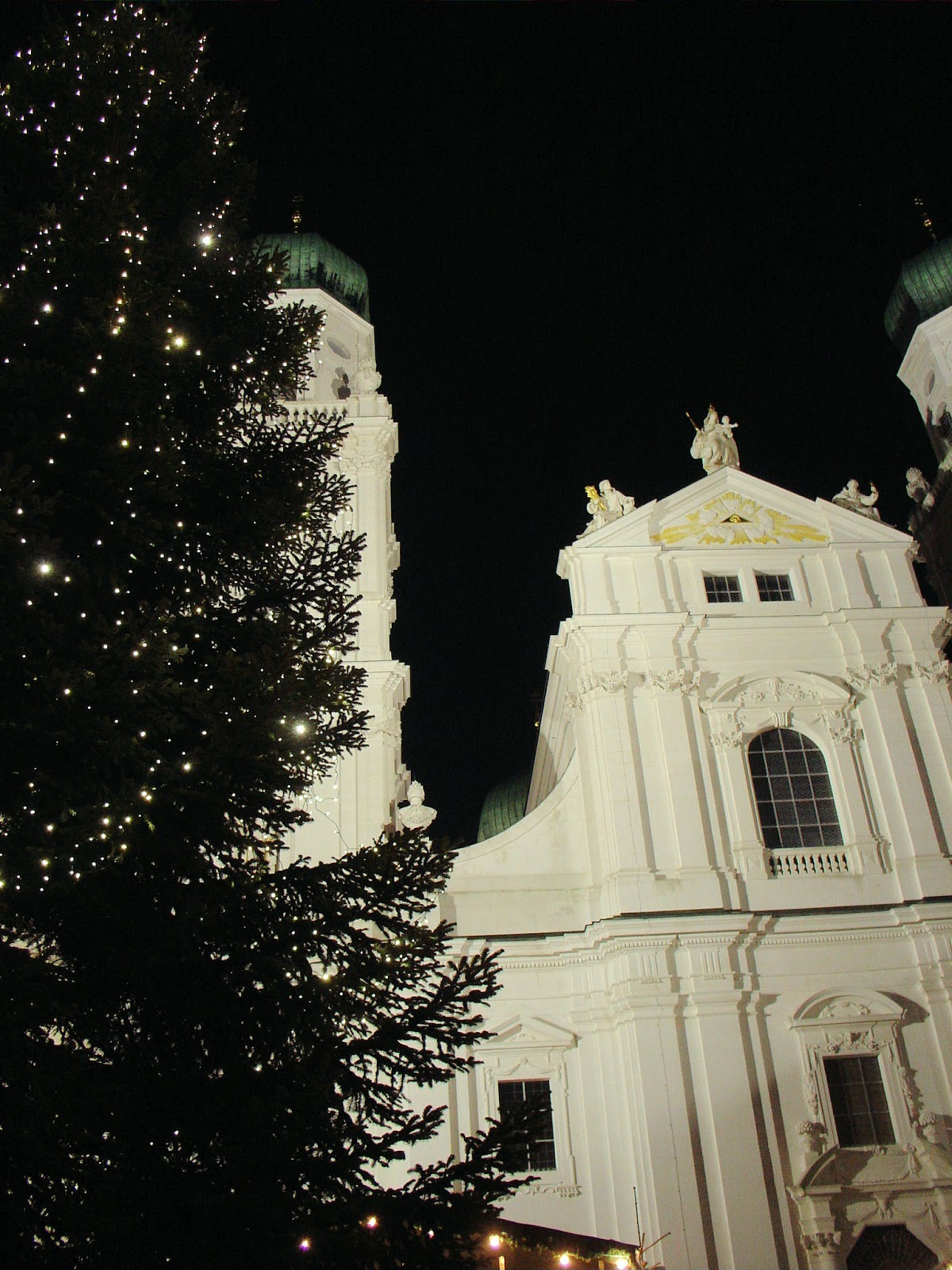 Saint Stephan's Cathedral in Passau provided a striking contract of the white cathedral against the velvety night.