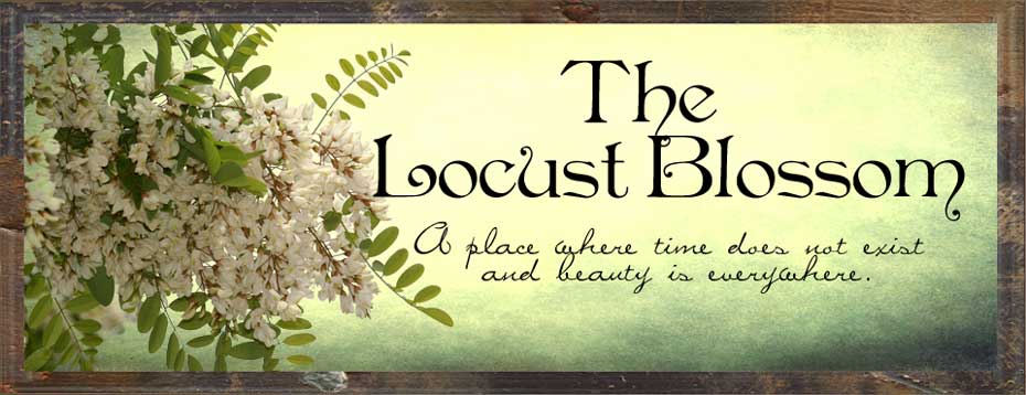 The Locust Blossom