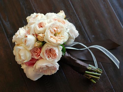 Botanica international design studio the garden rose for Rosa inglese